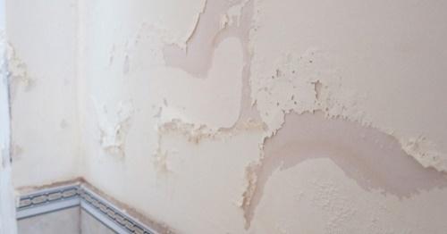 Tường nhà cũ bị bong tróc