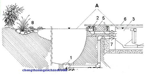 thiết kế bể cá ngoài trời