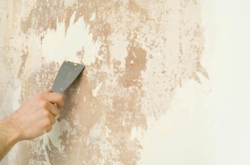 cách xử lý tường bị muối