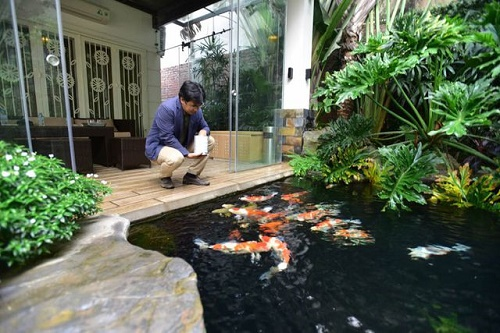 Keo chống thấm hồ cá