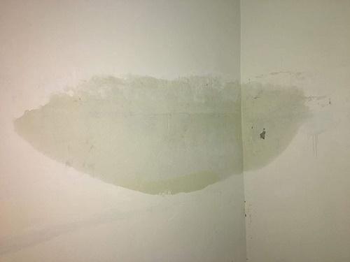 Tường nhà mới xây bị thấm