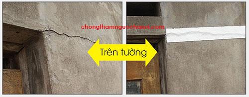 mieng-dan-chong-tham-tuong-nha