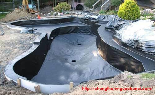 bạt chống thấm hồ cá sân thượng